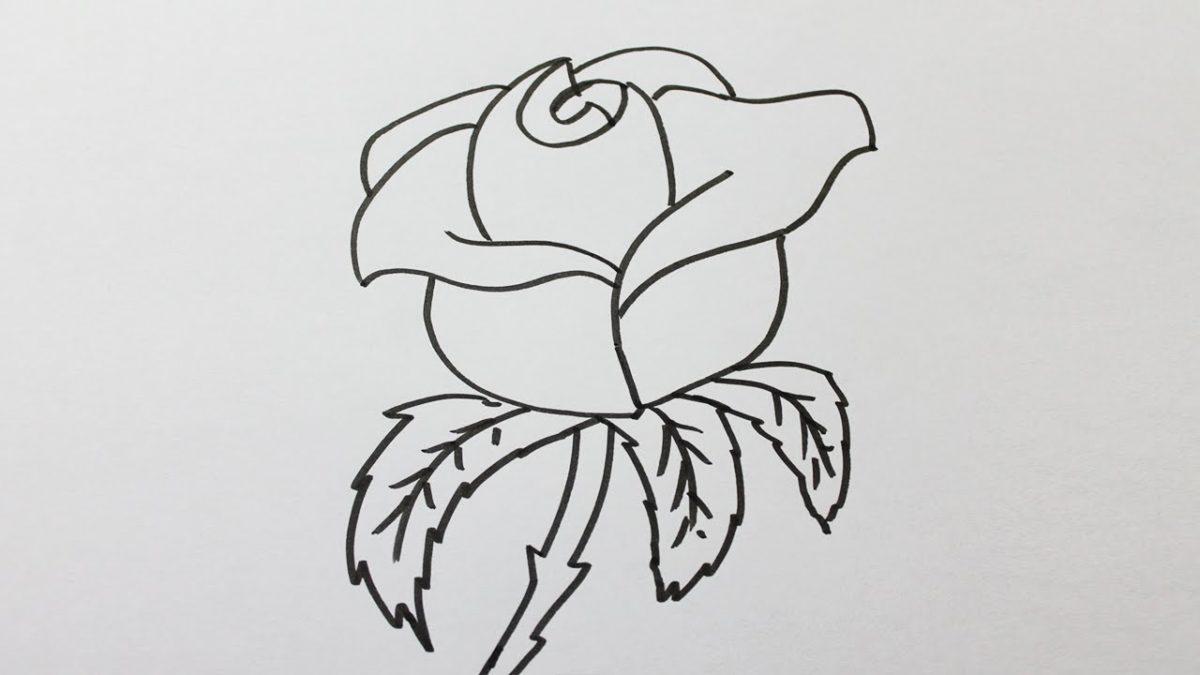 - Comment dessiner une tresse ...